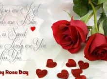 Happy rose day quotes wife